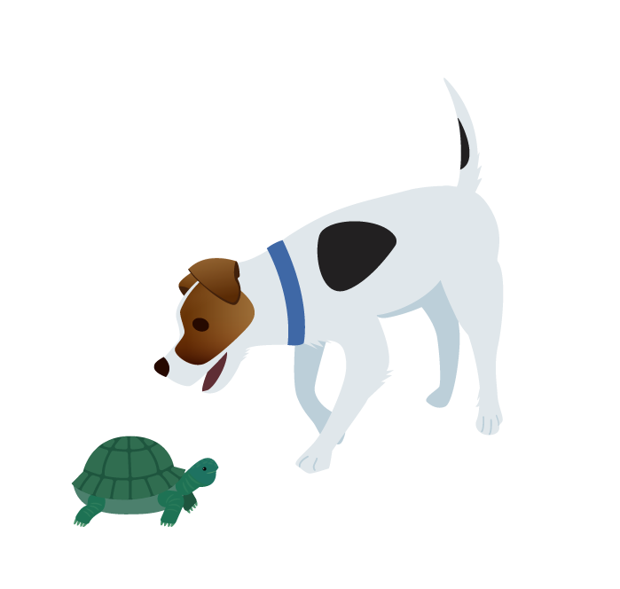 Illustration of Sherlock the dog sniffing a turtle
